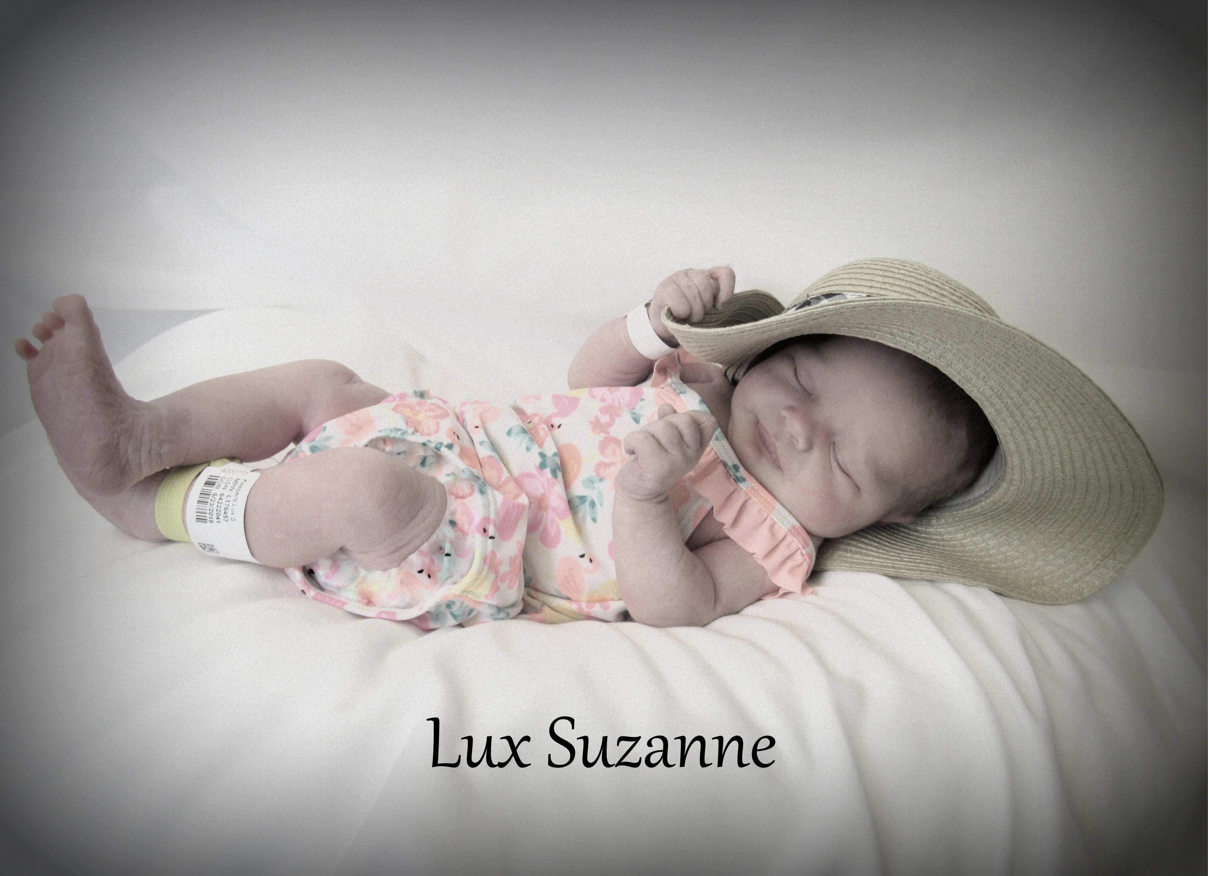 Lux Suzanne